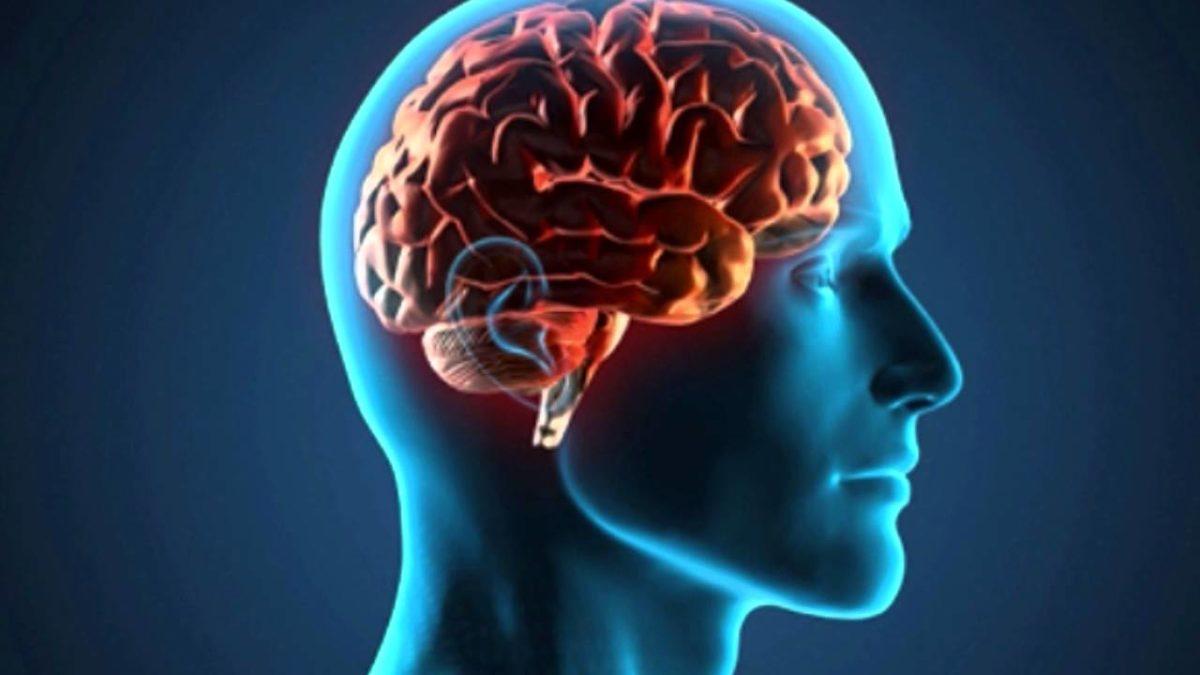 Novas-descobertas-sobre-células-tronco-no-cérebro-de-pacientes-com-epilepsia-1200x675.jpg