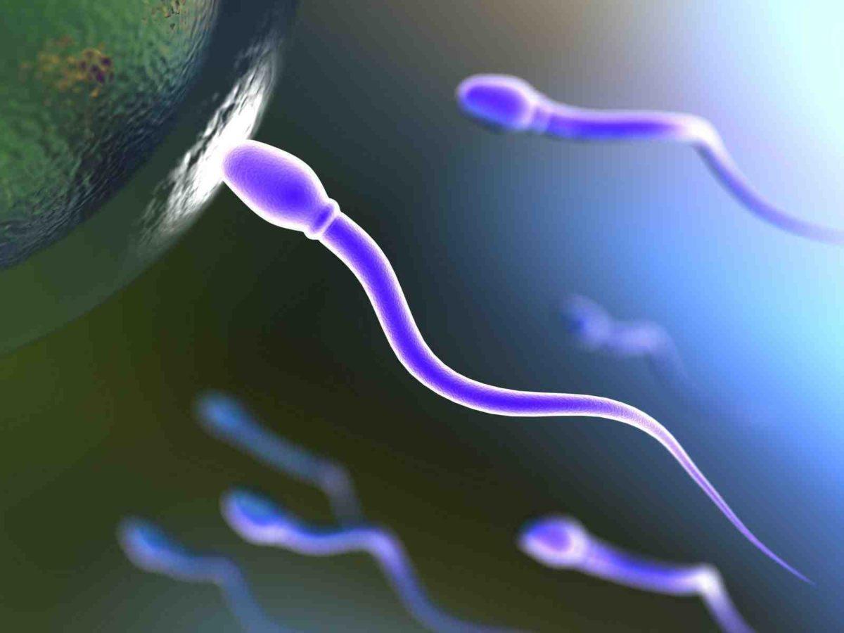infertilidade-masculina-1200x900.jpg