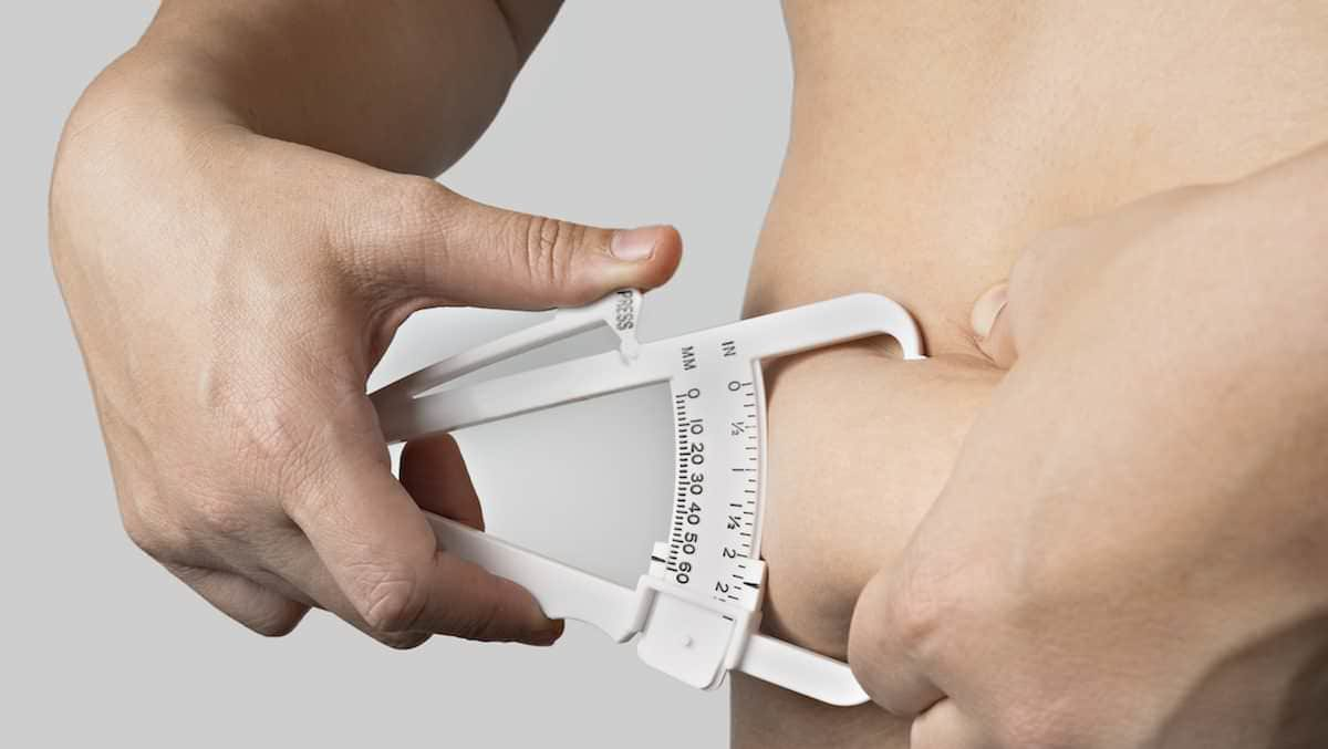 Pesquisa-comprova-que-excesso-de-gordura-saturada-provoca-a-morte-de-neurônios-foto-1200x677.jpg