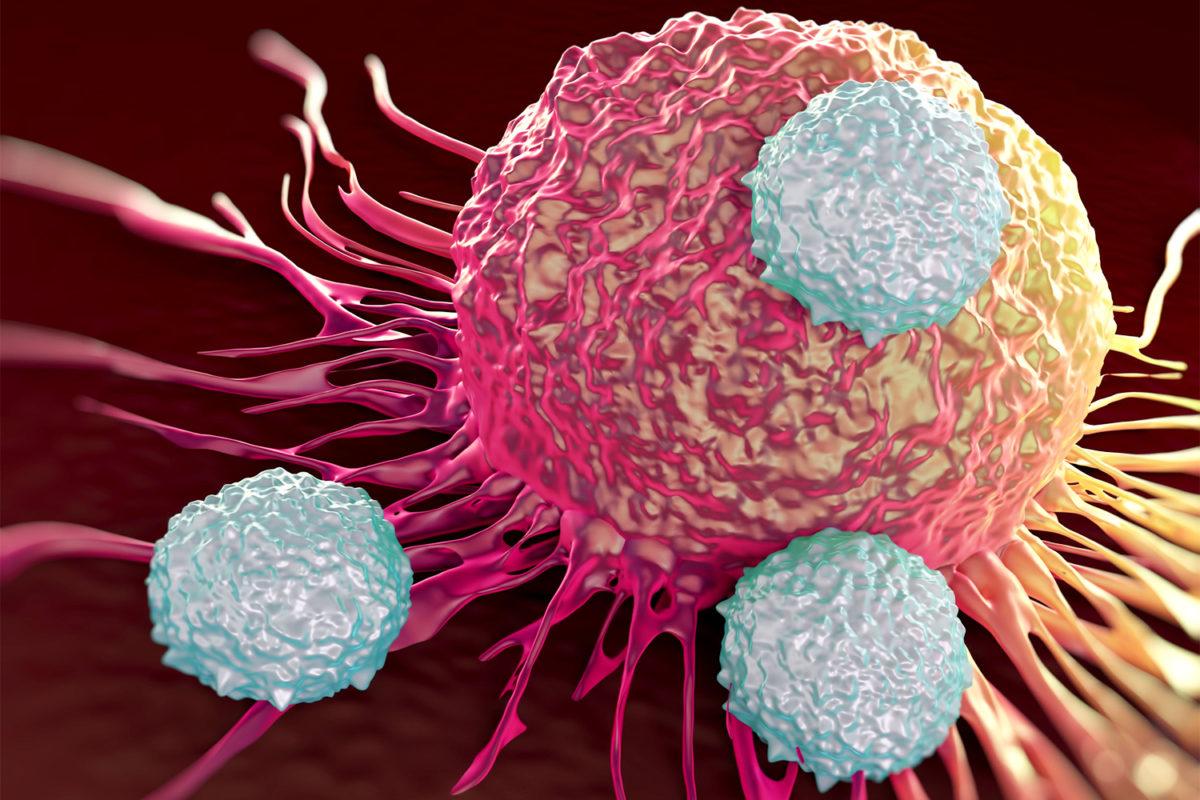saude-ataque-celulas-cancerigenas-1200x800.jpg